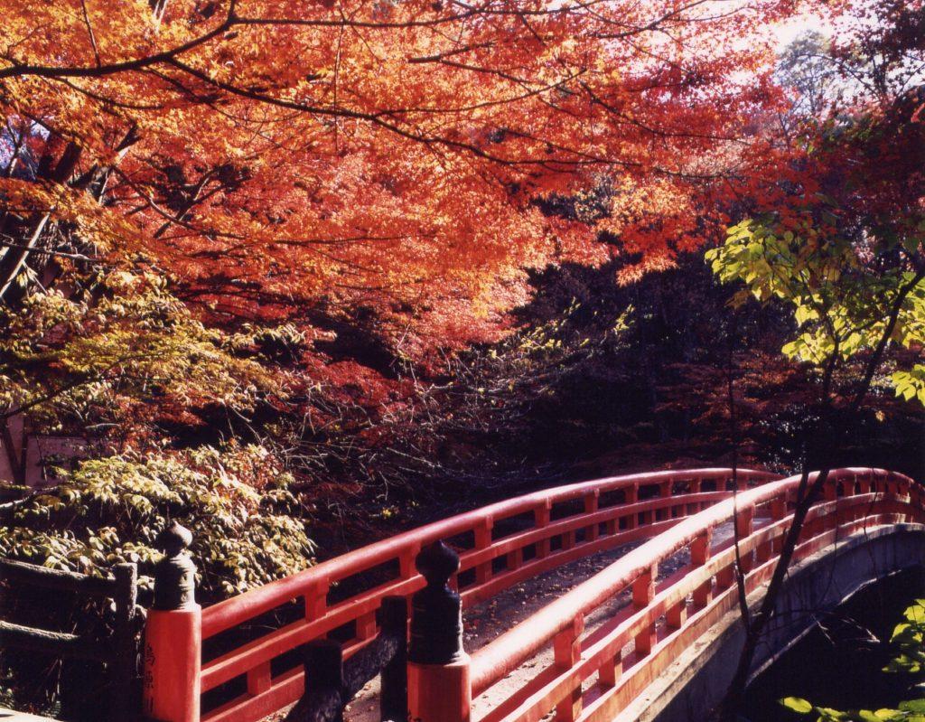 紅橋(くれないばし)/岩屋堂公園内